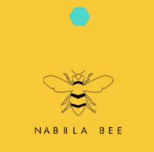 logo nabiilabee.png